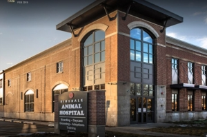 Hinsdale Animal Hospital