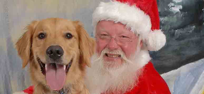 _golden-retriever-santa