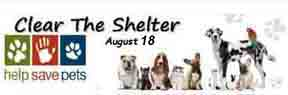 clear-the-shelters8