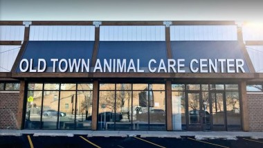Old Town Animal Care Center – Chicago