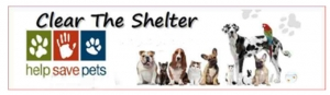 Clear the shelters No Date copy